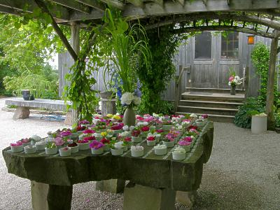Rose Table, 2009